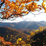 Hickory Nut Gorge in the Fall