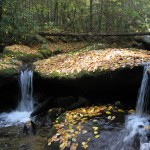 Hickory Nut Creek in the fall