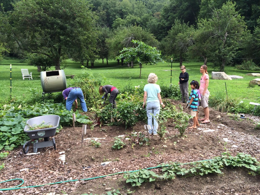 organic gardens orchards hickory nut forest