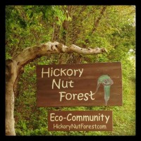 Hickory Nut Forest signpost