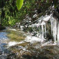 Hickory Nut Creek in winter