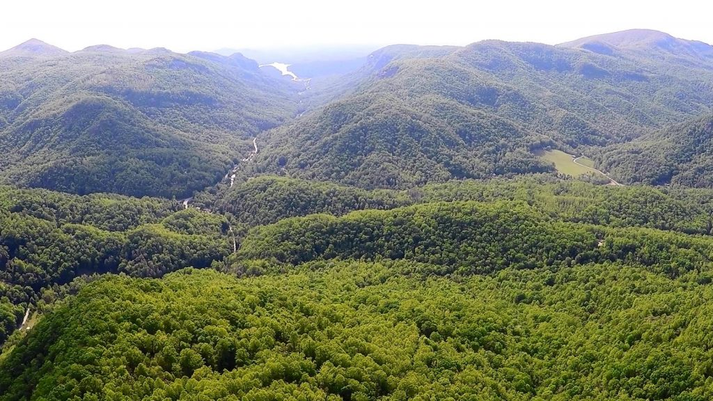Hickory Nut Gorge Aerial View