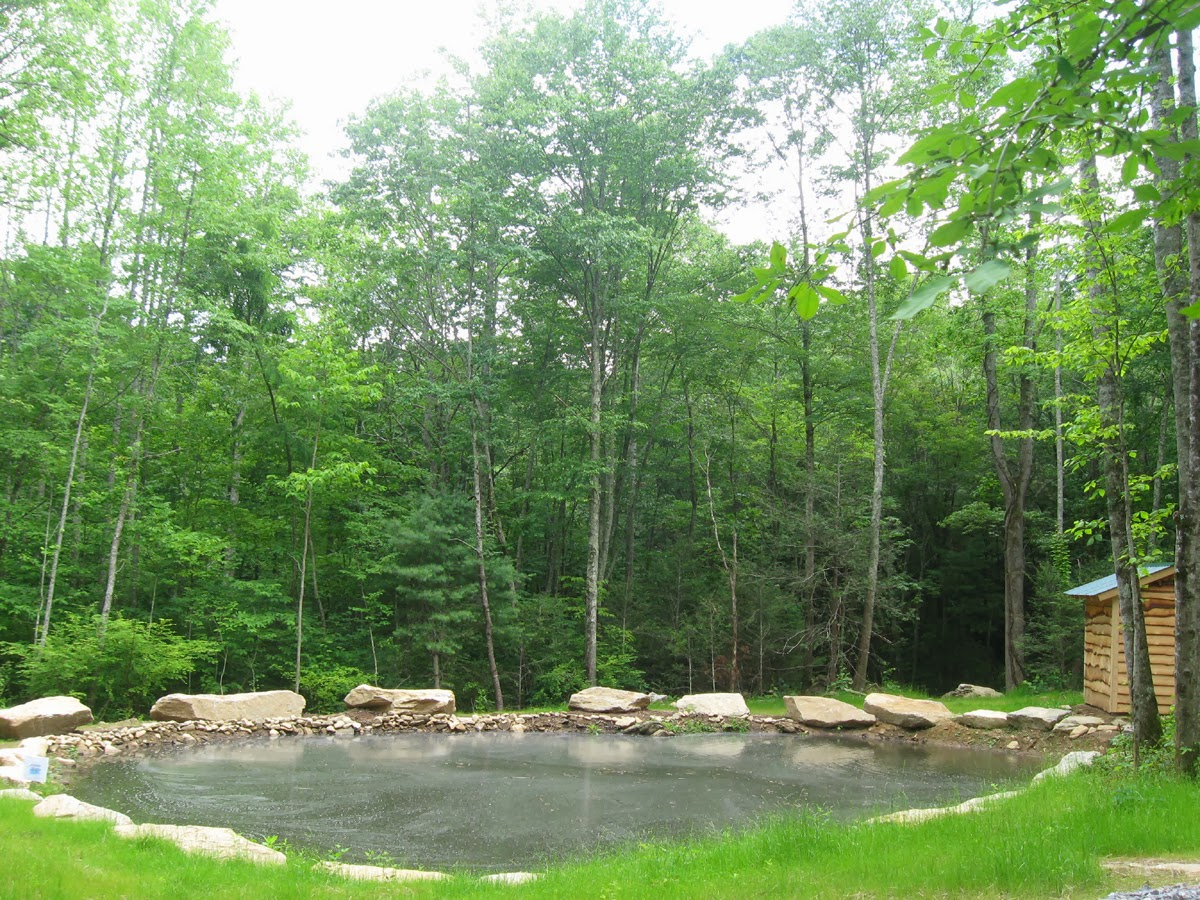 Hydro turbine pond at Hickory Nut Forest