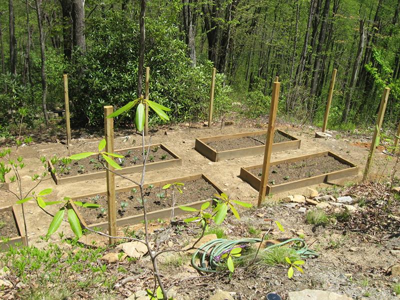 Raised-Beds Organic Vegetables