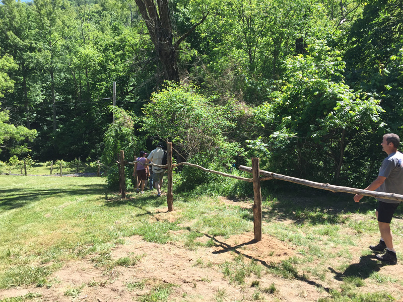 orchard new trail fence 6
